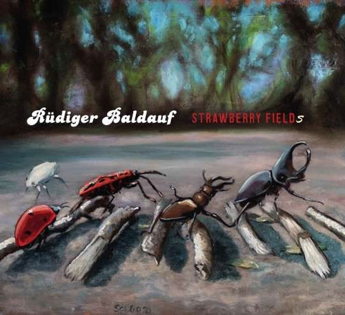 Rüdiger Baldauf - Strawberry Fields