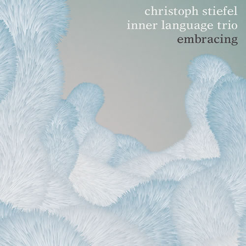 Christoph Stiefel Inner Language Trio - Embracing