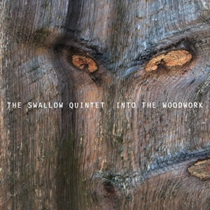 Steve Swallow - Into The Woodwork