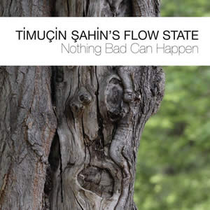 Timucin Sahin - Nothing Bad Can Happen